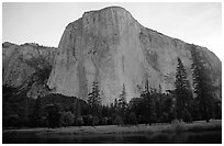 El Capitan, dawn. Yosemite National Park, California, USA. (black and white)