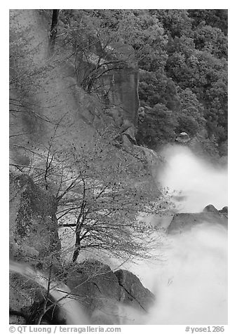 Cascade Creek spring run-off. Yosemite National Park (black and white)