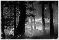 Prescribed fire. Yosemite National Park, California, USA. (black and white)