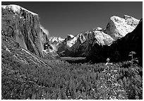 Yosemite Valley from Tunnel View in winter with snow-covered trees and mountains. Yosemite National Park, California, USA. (black and white)