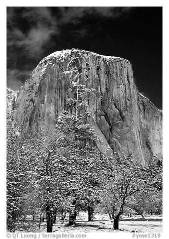 West face of El Capitan in winter. Yosemite National Park (black and white)