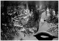 Reflections in Mirror Lake, winter afternoon. Yosemite National Park, California, USA. (black and white)