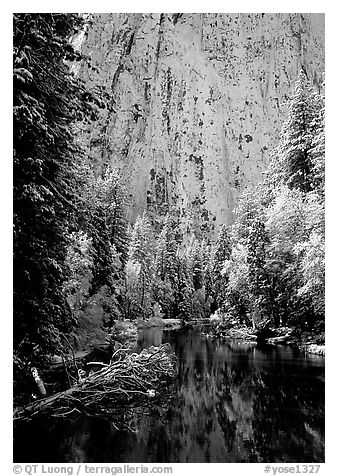 Cathedral rocks with fresh snow reflected in Merced River, early morning. Yosemite National Park (black and white)