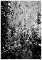 Cathedral rocks with fresh snow reflected in Merced River, early morning. Yosemite National Park, California, USA. (black and white)