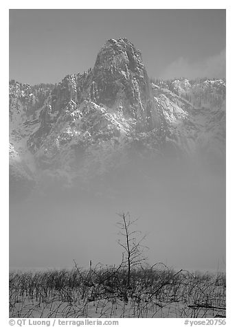 Sentinel rock rising above fog on valley in winter. Yosemite National Park (black and white)