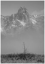 Sentinel rock rising above fog on valley in winter. Yosemite National Park, California, USA. (black and white)