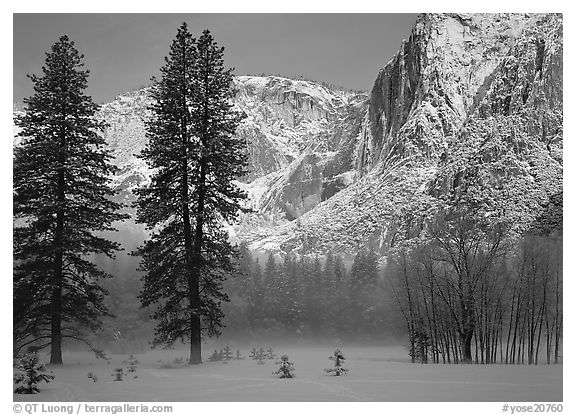 Awhahee Meadow and Yosemite falls wall with snow, early winter morning. Yosemite National Park (black and white)