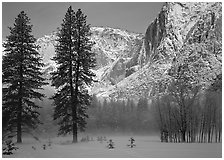 Awhahee Meadow and Yosemite falls wall with snow, early winter morning. Yosemite National Park, California, USA. (black and white)