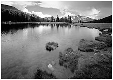 Alpine tarn near Tioga Pass. Yosemite National Park, California, USA. (black and white)