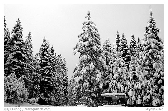 Park entrance in winter. Yosemite National Park (black and white)