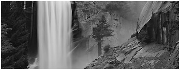 Vernal Fall and tree. Yosemite National Park (Panoramic black and white)