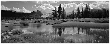 Lambert Dome reflected in seasonal Tuolume Meadows pond. Yosemite National Park (Panoramic black and white)