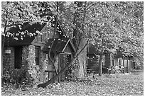 Private houses in autumn. Yosemite National Park ( black and white)