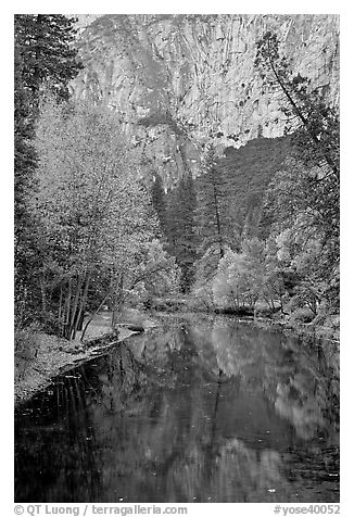 Trees in autumn foliage reflected in Merced River. Yosemite National Park (black and white)
