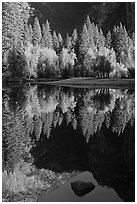 Reflections and rock, Merced River. Yosemite National Park ( black and white)