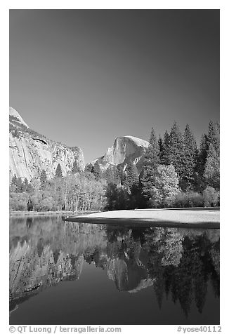 Trees in fall foliage and Half-Dome reflected in Merced River. Yosemite National Park (black and white)