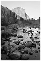 Boulders in Merced River and El Capitan at sunset. Yosemite National Park, California, USA. (black and white)