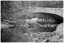 Bridge over the Merced River. Yosemite National Park ( black and white)