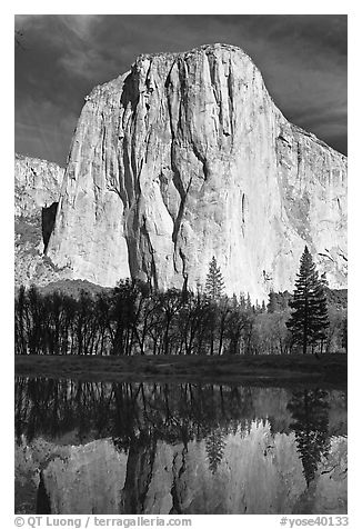 El Capitan and Merced River, morning. Yosemite National Park (black and white)