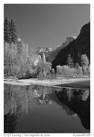 Trees in autum foliage, Half-Dome, and cliff reflected in Merced River. Yosemite National Park (black and white)