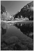 Rocks and Merced River reflections of trees and Half-DOme. Yosemite National Park, California, USA. (black and white)