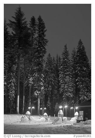 Well-lit gas station and snowy trees. Yosemite National Park (black and white)