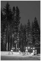 Well-lit gas station and snowy trees. Yosemite National Park, California, USA. (black and white)