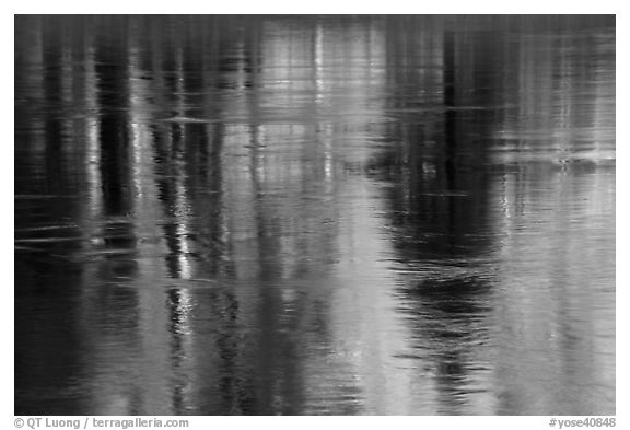 Spring reflections in Merced River. Yosemite National Park (black and white)