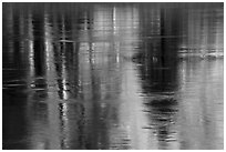 Spring reflections in Merced River. Yosemite National Park ( black and white)