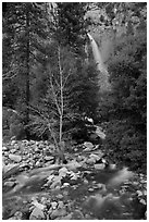 Lower falls, Cascade Creek. Yosemite National Park ( black and white)