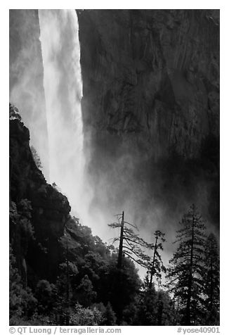 Base of Bridalveil fall. Yosemite National Park (black and white)