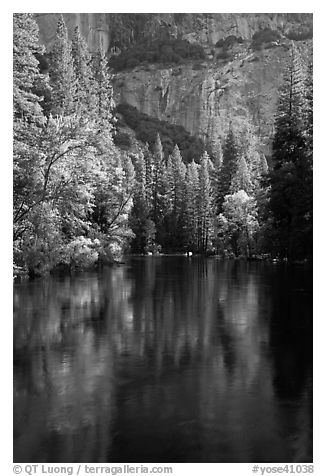 Trees reflected in river at the base of El Capitan in spring. Yosemite National Park (black and white)