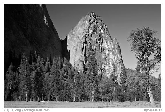 Cathedral Rocks in spring. Yosemite National Park (black and white)