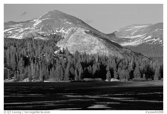Lambert Dome and mountain, spring, Tuolumne Meadows. Yosemite National Park (black and white)