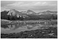 Lambert Dome and Sierra Crest peaks reflected in seasonal pond, dusk. Yosemite National Park, California, USA. (black and white)