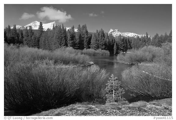 Fresh snow, stream, and Cathedral Peak. Yosemite National Park (black and white)