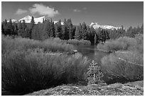 Fresh snow, stream, and Cathedral Peak. Yosemite National Park ( black and white)