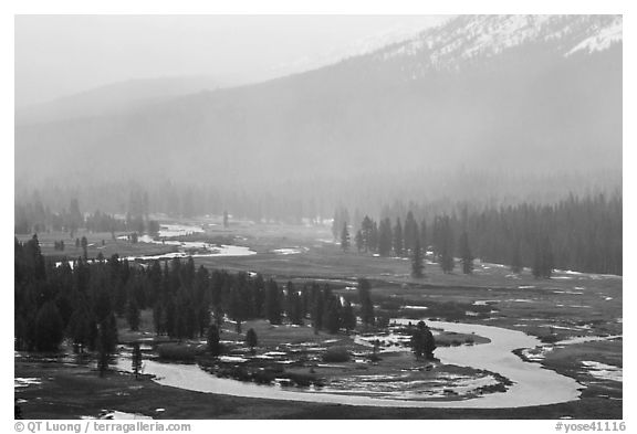 Seasonal ponds and fog, Tuolumne Meadows. Yosemite National Park (black and white)