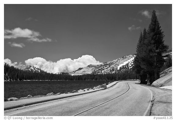 Highway hugging shore of Tenaya Lake. Yosemite National Park, California, USA.