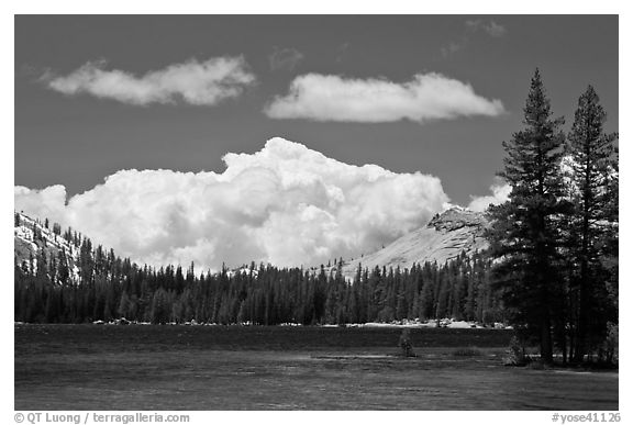 Tenaya Lake and clouds. Yosemite National Park (black and white)