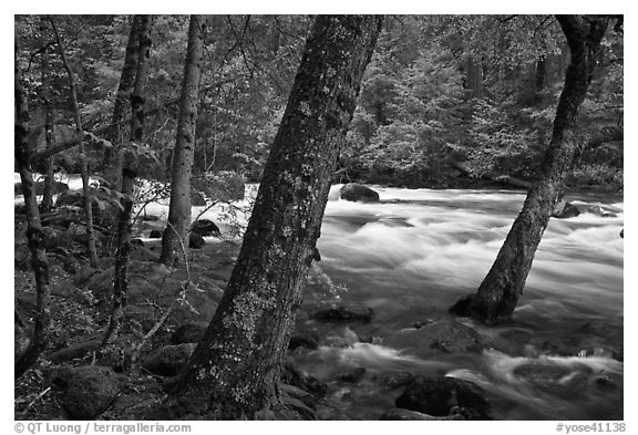 Merced River in the Spring, Happy Isles. Yosemite National Park (black and white)