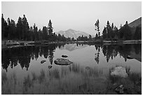 Alpine tarn near Tioga Pass and reflections at sunset. Yosemite National Park ( black and white)
