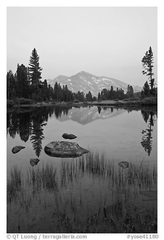 Mammoth Peak reflected in tarn at sunset. Yosemite National Park (black and white)