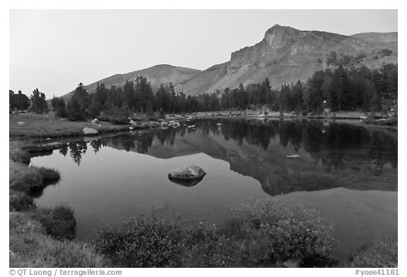Mt Dana shoulder reflected in tarn at dusk. Yosemite National Park (black and white)