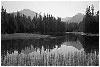 Mount Dana and Mount Gibbs reflected in lake, morning. Yosemite National Park ( black and white)