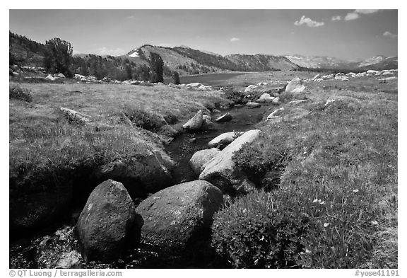 Alpine scenery with stream and distant Gaylor Lake. Yosemite National Park (black and white)