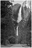 Tourists on path dwarfed by Upper and Lower Yosemite Falls. Yosemite National Park, California, USA. (black and white)