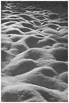 Snow mounds, Cook Meadow. Yosemite National Park ( black and white)