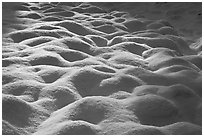 Rounded pattern of snow over grasses, Cook Meadow. Yosemite National Park ( black and white)