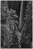Bridalveil Fall after rare spring snow storm. Yosemite National Park, California, USA. (black and white)